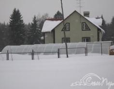Павильон для бассейна зимой фото